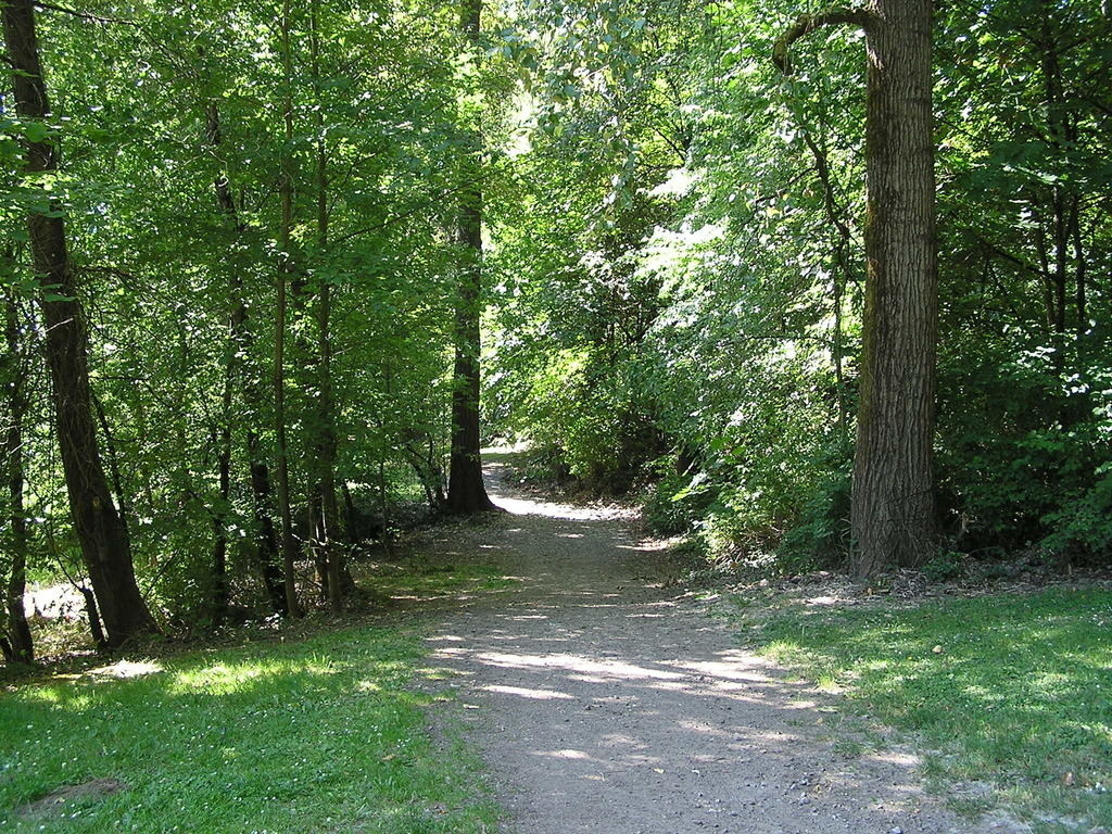 Powers Marine Park Is A Natural Area With Paths And Picnic Areas. The Park  Was Named After Ira Powers, Owner Of Powers Furniture Company, ...